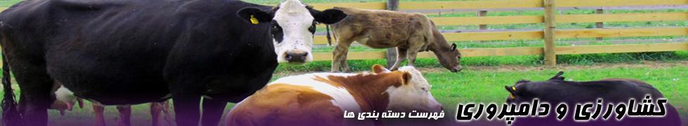 کشاورزی و دامپروری